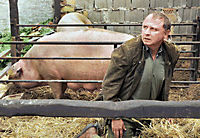Pfarrer Braun: Schwein gehabt! - Produktdetailbild 3
