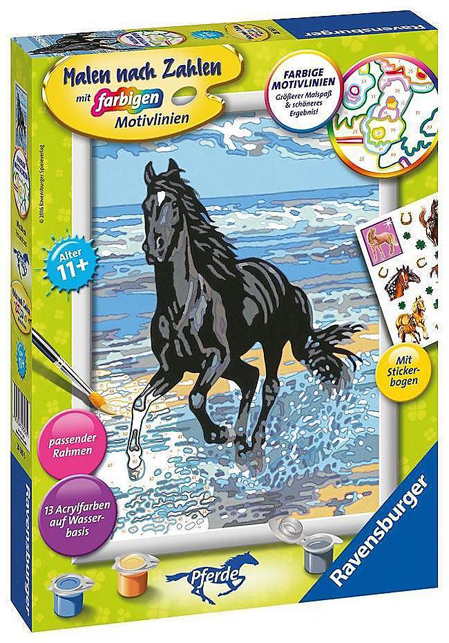 Pferd Am Strand Malen Nach Zahlen Serie D Pferde Weltbildde