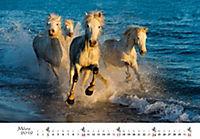 Pferde 2019 - Produktdetailbild 3