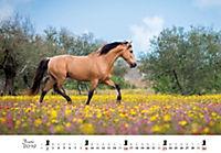 Pferde 2019 - Produktdetailbild 6