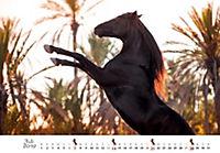 Pferde 2019 - Produktdetailbild 7
