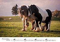 Pferde 2019 - Produktdetailbild 11