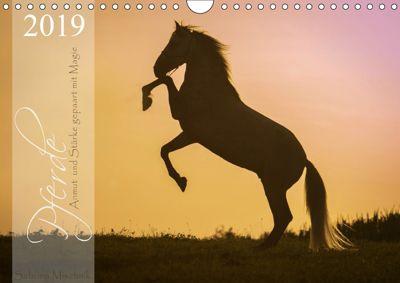 Pferde - Anmut und Stärke gepaart mit Magie (Wandkalender 2019 DIN A4 quer), Sabrina Mischnik