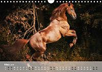 Pferde - Anmut und Stärke gepaart mit Magie (Wandkalender 2019 DIN A4 quer) - Produktdetailbild 3