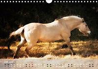 Pferde - Anmut und Stärke gepaart mit Magie (Wandkalender 2019 DIN A4 quer) - Produktdetailbild 6