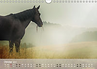 Pferde - Anmut und Stärke gepaart mit Magie (Wandkalender 2019 DIN A4 quer) - Produktdetailbild 10