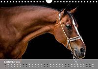 Pferde - Anmut und Stärke gepaart mit Magie (Wandkalender 2019 DIN A4 quer) - Produktdetailbild 9