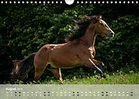 Pferde - Anmut und Stärke gepaart mit Magie (Wandkalender 2019 DIN A4 quer) - Produktdetailbild 8