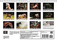 Pferde - Anmut und Stärke gepaart mit Magie (Wandkalender 2019 DIN A4 quer) - Produktdetailbild 13