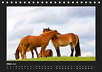 Pferde Frei wie der Wind (Tischkalender 2019 DIN A5 quer) - Produktdetailbild 3
