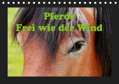 Pferde Frei wie der Wind (Tischkalender 2019 DIN A5 quer), Jan Wolf