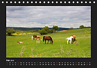 Pferde Frei wie der Wind (Tischkalender 2019 DIN A5 quer) - Produktdetailbild 5