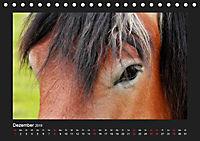 Pferde Frei wie der Wind (Tischkalender 2019 DIN A5 quer) - Produktdetailbild 12