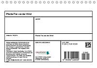 Pferde Frei wie der Wind (Tischkalender 2019 DIN A5 quer) - Produktdetailbild 13