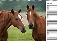 Pferde im schönen Taunus (Wandkalender 2019 DIN A2 quer) - Produktdetailbild 7