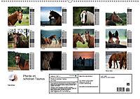 Pferde im schönen Taunus (Wandkalender 2019 DIN A2 quer) - Produktdetailbild 13