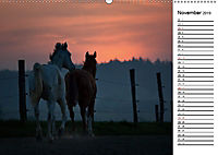 Pferde im schönen Taunus (Wandkalender 2019 DIN A2 quer) - Produktdetailbild 11