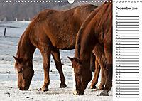 Pferde im schönen Taunus (Wandkalender 2019 DIN A3 quer) - Produktdetailbild 6