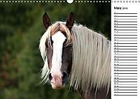 Pferde im schönen Taunus (Wandkalender 2019 DIN A3 quer) - Produktdetailbild 3