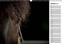Pferde im schönen Taunus (Wandkalender 2019 DIN A3 quer) - Produktdetailbild 10