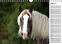Pferde im schönen Taunus (Wandkalender 2019 DIN A4 quer) - Produktdetailbild 3