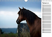 Pferde im schönen Taunus (Wandkalender 2019 DIN A4 quer) - Produktdetailbild 2