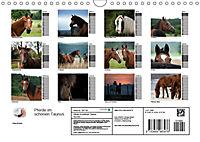 Pferde im schönen Taunus (Wandkalender 2019 DIN A4 quer) - Produktdetailbild 13