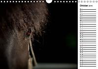 Pferde im schönen Taunus (Wandkalender 2019 DIN A4 quer) - Produktdetailbild 10