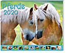 Pferde Kalender-Paket 2020, 9tlg.