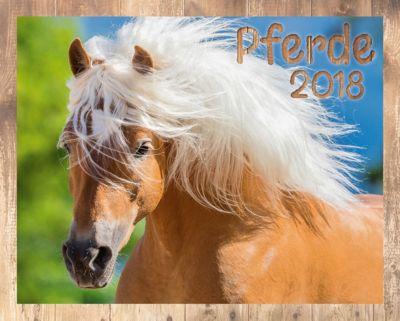 Pferde Kalenderpaket 2018, 6-tlg.