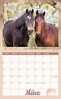 Pferde Kalenderpaket 2018, 6-tlg. - Produktdetailbild 2