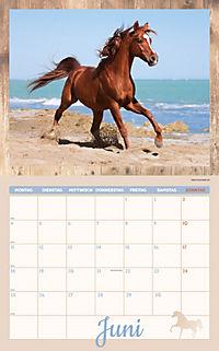 Pferde Kalenderpaket 2018, 6-tlg. - Produktdetailbild 4