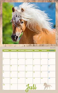 Pferde Kalenderpaket 2018, 6-tlg. - Produktdetailbild 5