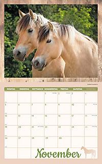 Pferde Kalenderpaket 2018, 6-tlg. - Produktdetailbild 7