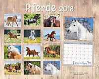 Pferde Kalenderpaket 2018, 6-tlg. - Produktdetailbild 10