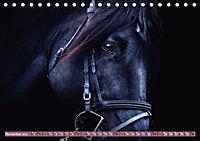 Pferde - kraftvolle Eleganz (Tischkalender 2019 DIN A5 quer) - Produktdetailbild 11
