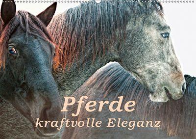 Pferde - kraftvolle Eleganz (Wandkalender 2019 DIN A2 quer), Liselotte Brunner-Klaus