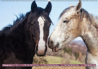 Pferde - kraftvolle Eleganz (Wandkalender 2019 DIN A2 quer) - Produktdetailbild 2