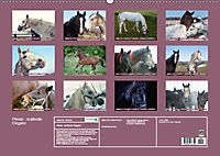 Pferde - kraftvolle Eleganz (Wandkalender 2019 DIN A2 quer) - Produktdetailbild 13