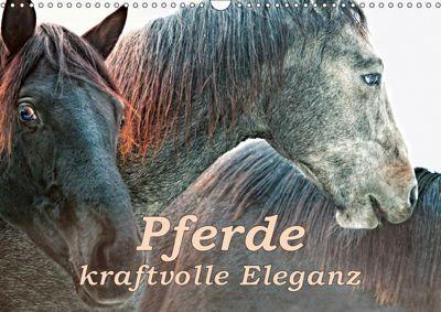 Pferde - kraftvolle Eleganz (Wandkalender 2019 DIN A3 quer), Liselotte Brunner-Klaus
