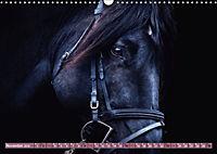 Pferde - kraftvolle Eleganz (Wandkalender 2019 DIN A3 quer) - Produktdetailbild 11