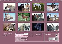 Pferde - kraftvolle Eleganz (Wandkalender 2019 DIN A3 quer) - Produktdetailbild 13