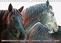 Pferde - kraftvolle Eleganz (Wandkalender 2019 DIN A4 quer) - Produktdetailbild 7