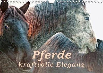 Pferde - kraftvolle Eleganz (Wandkalender 2019 DIN A4 quer), Liselotte Brunner-Klaus