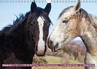 Pferde - kraftvolle Eleganz (Wandkalender 2019 DIN A4 quer) - Produktdetailbild 2