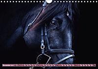 Pferde - kraftvolle Eleganz (Wandkalender 2019 DIN A4 quer) - Produktdetailbild 11