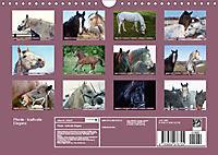 Pferde - kraftvolle Eleganz (Wandkalender 2019 DIN A4 quer) - Produktdetailbild 13