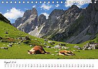 Pferde und Ponys im Paradies (Tischkalender 2019 DIN A5 quer) - Produktdetailbild 8