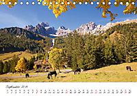 Pferde und Ponys im Paradies (Tischkalender 2019 DIN A5 quer) - Produktdetailbild 9