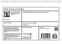 Pferde und Ponys im Paradies (Tischkalender 2019 DIN A5 quer) - Produktdetailbild 13